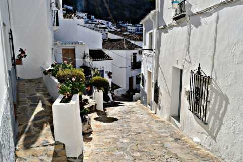 From Seville: White Villages Tour