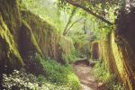 Sintra: Kingdom of Love Private Walking Tour with Historian