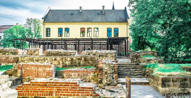 Medieval Oslo Walk: From Ashes to Rebirth