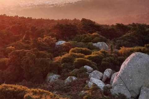 Private Evening Walk: Sintra Mountains Inbetween Wolves