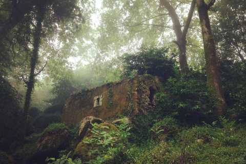 Sintra Guided Visit: Life and Death at the Capuchos Convent