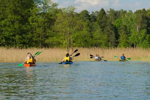 Desde Vilnius: Trakai, experiencia de kayak de día completo