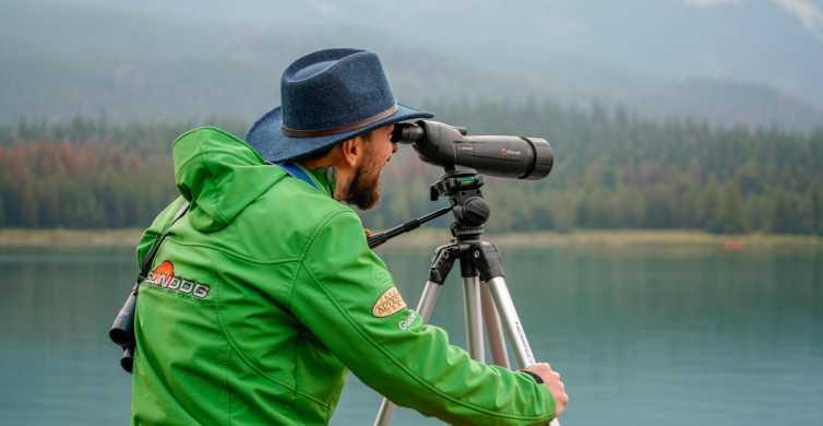 Jasper National Park: Interpretive Nature Walk