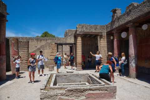 Naples: Pompeii and Herculaneum Private Walking Tour