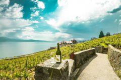 De Genebra: Excursão pela Riviera Suíça