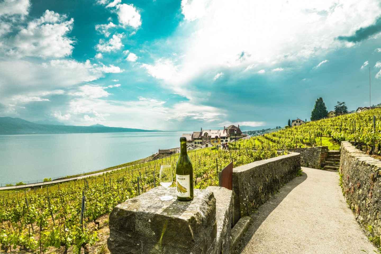 Ab Genf: Schweizer Riviera