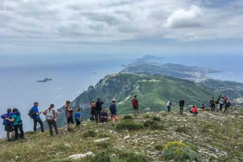 Faito Mountain: Hike the Highest Peak of the Amalfi Coast