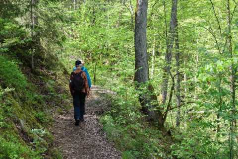 Sigulda Hiking Tour: A Day in the Switzerland of Latvia