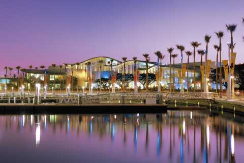 Los Angeles: Aquarium of the Pacific Skip-the-Line Tickets