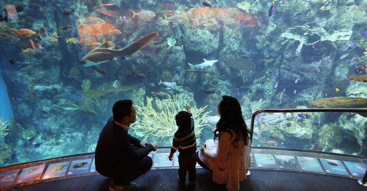Aquarium of the Pacific: Skip køen-entrébillet