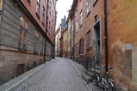 Stockholm: visite de la ville de 3 heures avec guide