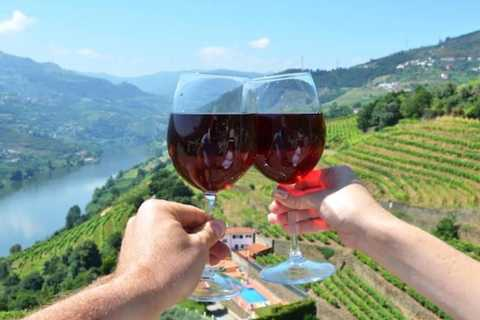 From Porto: Douro Valley Wine Private Tour Full Day