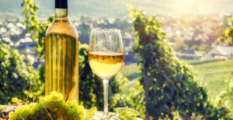 Alsace Half-Day Wine Tour from Strasbourg
