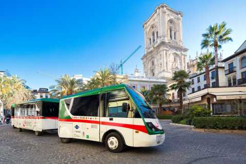 Granada City Train 1 or 2-Day Hop-On Hop-Off Ticket