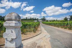 Bordeaux: Excursão c/ Degustação de Vinhos em Saint-Émilion