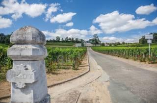 Ab Bordeaux: Weinverkostungs-Tagestour nach Saint-Émilion
