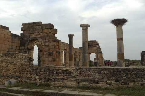 From Fez: Volubilis Moulay Idriss & Meknes Full-Day Trip