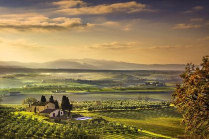 Ab Florenz: Private ...