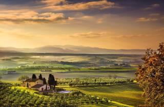 Ab Florenz: Private Halbtagestour & Chianti-Weinverkostung