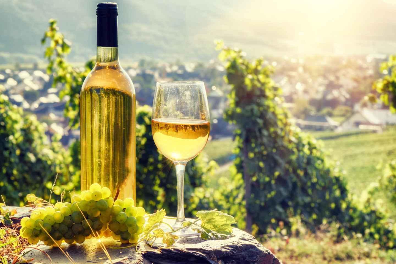 Ab Straßburg: Tagestour im Zeichen des Weins mit Verkostung