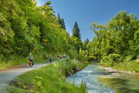 Queenstown: Half-Day Guided Ebike Wine Tour