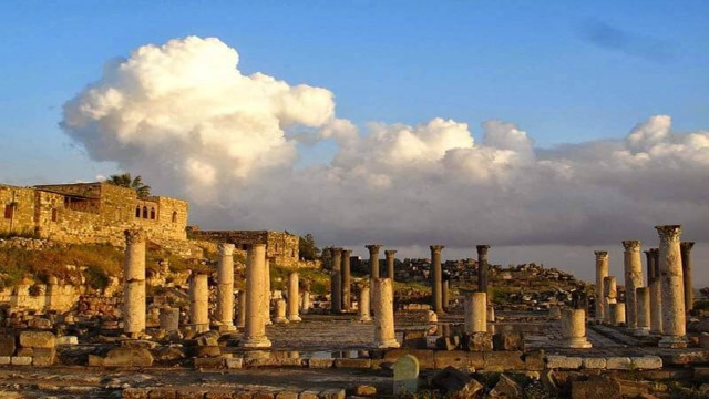 Amman: privétour naar Jerash, Ajloun en Umm Qais