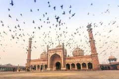 Forte Vermelho e Velha Delhi: Excursão a Pé e de Riquixá