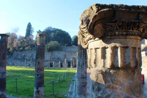 Pompéia: excursão particular à Antiga Pompéia e Herculano