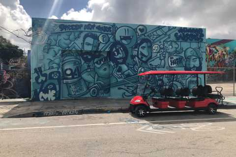 Wynwood Art District: 1-Hour Buggy Street Art Tour