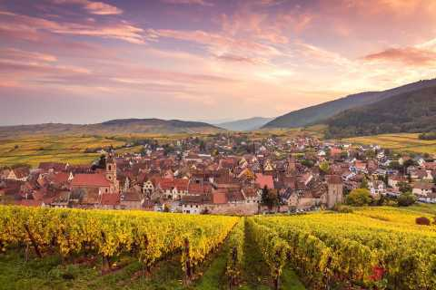 The 4 Wonders of Alsace Day Tour from Colmar