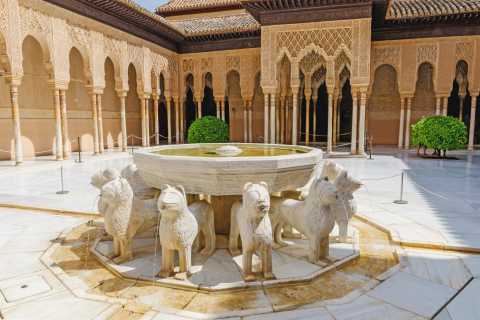 Alhambra & Nasrid Palace: Private Tour with Tickets