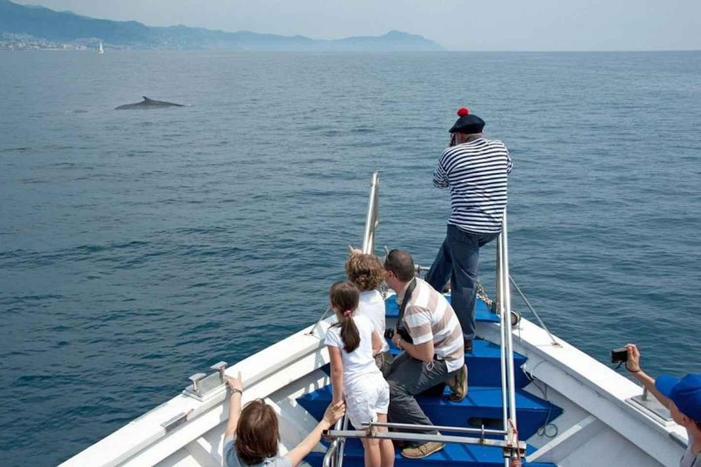 Genua: Aquarium Eintritt & Walbeobachtung-Bootstour