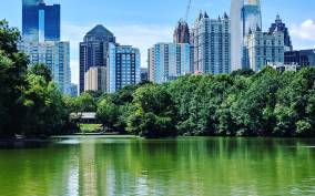 Atlanta: A City in a Forest Private Nature Tour
