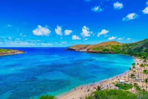 Oahu 120-Mile Full-Day Tour Including Dole Plantation