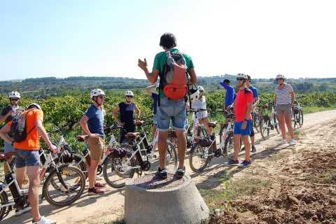 Barcelona: Full-Day Wine Bike Tour with Classic Bike
