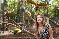 Foz do Iguaçu: Excursão no Parque das Aves c/ Ingressos