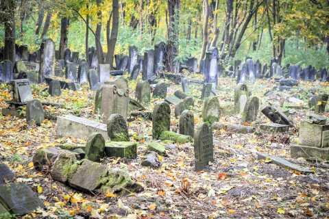 Jüdisches Warschau: Stadtrundfahrt
