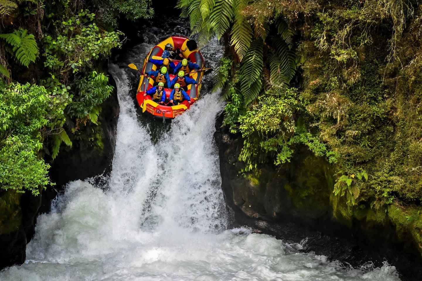 rafting in new zealand   enjoy a recreational time at kaituna river and tutea falls whitewater