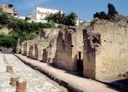 Ab Neapel: Pompeji, Herculaneum & Vesuv Tour per Luxusbus