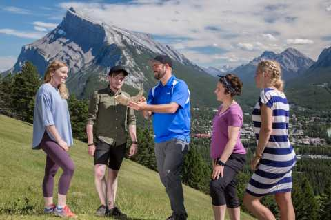 Banff: Sightseeing and Wildlife Minibus Tour