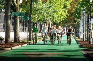 Wien mit dem Rad: 3-stündige All-In-One-Tour auf Englisch