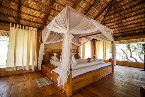 Tangalle: Luxury Camping and Safari Experience in Yala Park