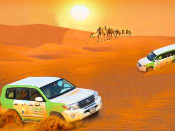 Dubai: Wüstensafari mit BBQ, Kamelritt & Sandboarding