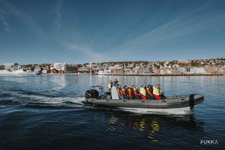 Tromsø: Fjord-Exkursion mit einem RIB-Boot