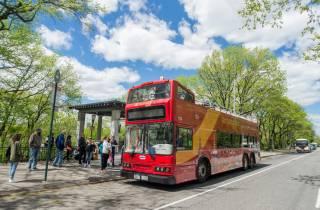 New York: Hop-On/Hop-Off-Bus, Fähren- & Nachttour-Optionen