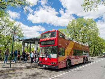 New York: Hop-On/Hop-Off-Bus, Fähren- & Nachttour-Optionen. Foto: GetYourGuide
