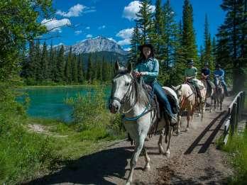 Nationalpark Banff: 1-stündige Reittour am Bow River