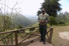De Kingston: Blue Mountain Caminhada e Coffee Tour