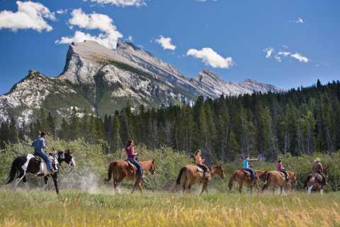Banff: 3-Hour Bow Valley Loop Horseback Ride