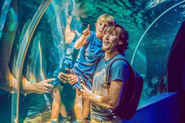 Explorer Ticket voor Dubai Aquarium & Underwater Zoo